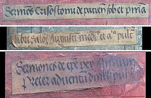 Title labels from the Salzburg Cathedral Chapter Library from around 1500