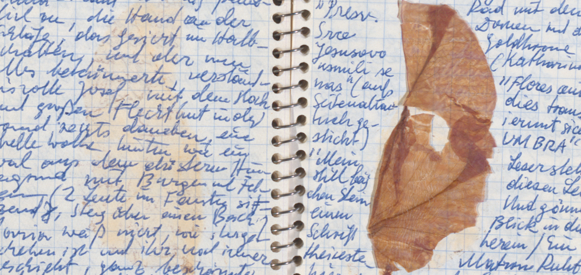 Peter Handke's note book for a novel